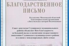 Совет депутатов 2009